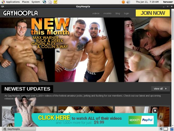 Sign Up Gay Hoopla